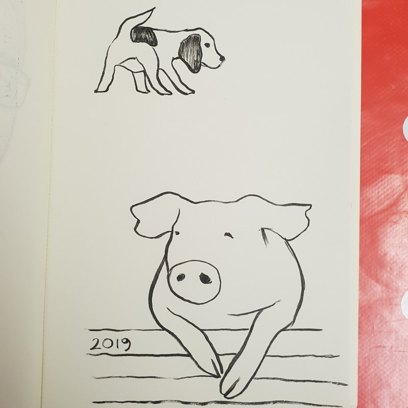 how to draw a pig dragoart